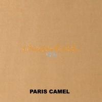 Paris Camel