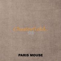 Paris Mouse